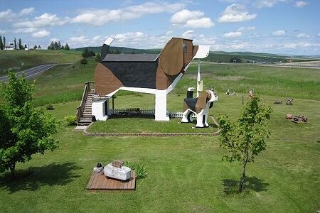dog-house02