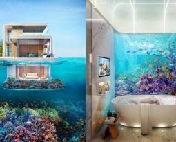 これぞ海の家 ホンモノの「海に浮かぶ家」